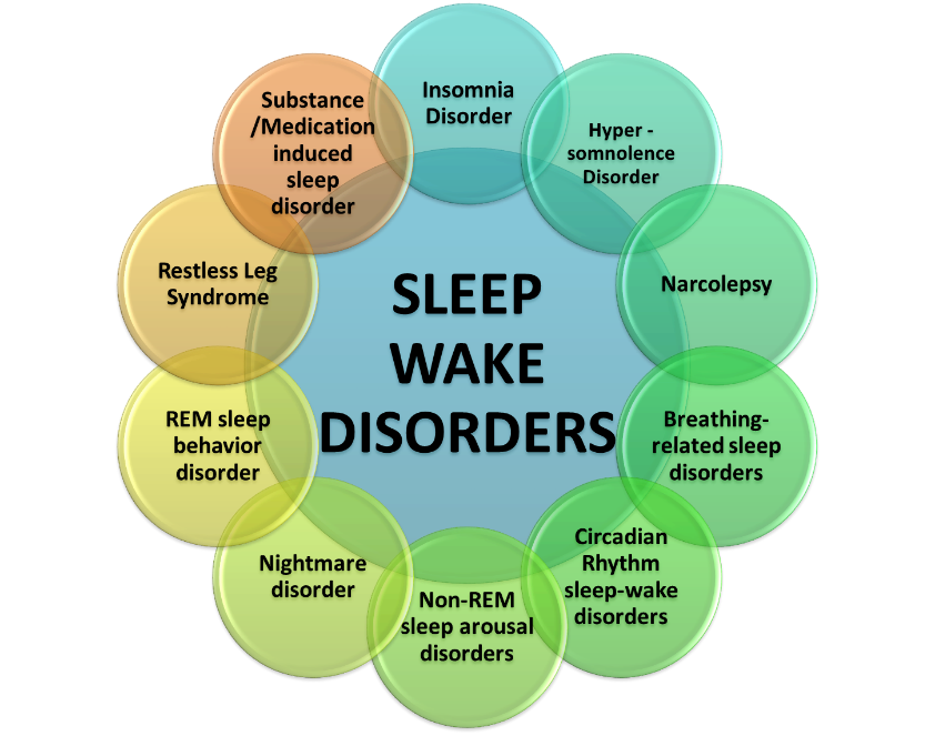 Sleep Wake Disorders Wheel